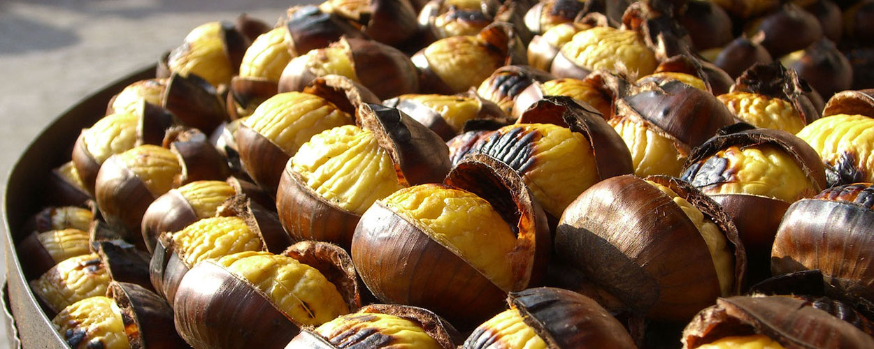 chestnuts to celebrate Autumn